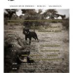 seminario en salamanca jad terrier 2016